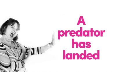 A Predator Has Landed