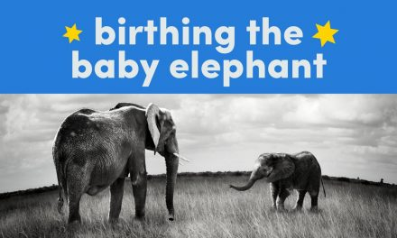 Birthing The Baby Elephant